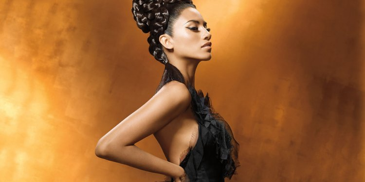 Braided Black Hairstyle