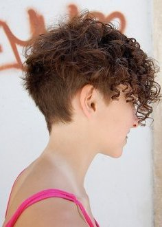 side-view of stylish brief Curly Hairstyle: Curly Hairstyles for 2014